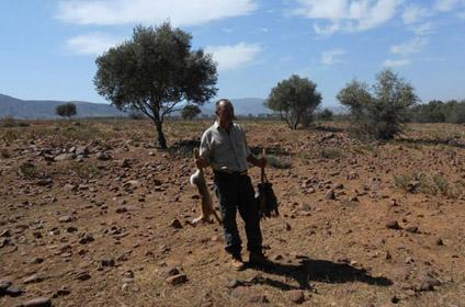 Chasser au Maroc